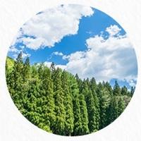 未来の子ども達に豊かな緑を残したい。(公社)国土緑化推進機構のウェブサイトをチェック