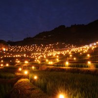 日本の誇る神秘風景。【三重県・熊野】丸山千枚田の虫おくりが幻想的