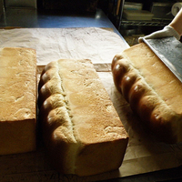 秋のピクニックにおすすめ!横浜 元町・山下公園近辺のおすすめパン屋さん
