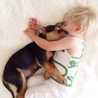 いつも一緒だよ。子犬とボクのお昼寝写真が世界中で大人気♪