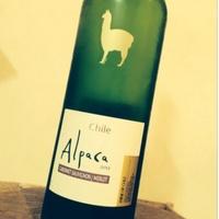 ラベルもかわいい!【Alpaca】のワインがお手頃なのにとってもおいしいんです♪