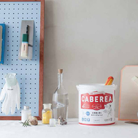 空気をきれいにする【CABEREA】で壁を塗り替えてみませんか?
