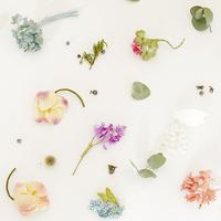 繊細で可憐なpleinpanier(プランパニエ)布花のアクセサリー