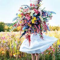 """あなたに春を届けます…*待ち受けに使いたくなる""""花の画像""""を集めました"""