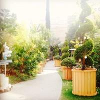 """まるで都会の中の植物園!""""代々木ヴィレッジ""""で珍しい木々に囲まれて幸せ時間を過しましょう。"""