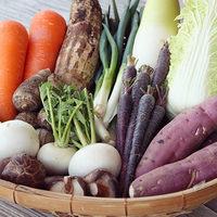 各地域で大人気☆安心・新鮮・お得な野菜が手に入る直売所に熱視線!