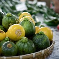 新鮮で豊かな味わいのブランド野菜。「鎌倉野菜」が注目されています!