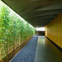 都会の喧騒を忘れさせてくれる日本庭園が素敵。「根津美術館」へ行こう