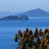 今、注目されている福岡県・糸島。オススメ観光スポット教えます♪