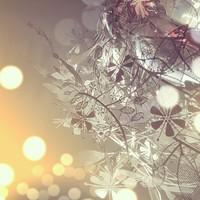 美しく幻想的な光。森を思わせる照明「Garland(ガーランド)」