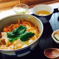 とにかく美味しい高知県。ほっこりランチのおすすめ5選