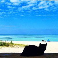 一度は訪れたい地上の楽園。沖縄「竹富島」の観光・宿泊情報をご紹介