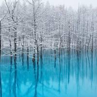 これからの季節さらに魅力が増す! 寒い季節にこそおすすめの癒しスポット6選