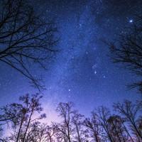 イルミネーションもいいけど、自然の光も素敵だよ★星空がきれいに見えるスポットに出かけよう!