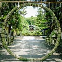 家の近くの神社はあるかな?いつかは行きたい初詣の神社5選