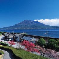 五感で感じる鹿児島の魅力いろいろ。鹿児島ショートトリップに出かけよう
