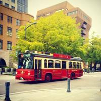 レトロなかわいいバス「あかいくつ号」で巡る♪【横浜】おすすめ観光スポット