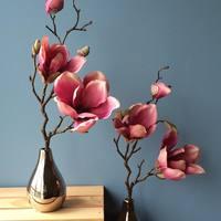 モダンな侘び寂び。「一輪挿し」で楽しむナチュラルなお花