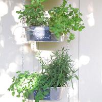 お庭がなくても大丈夫。簡単アイディアで春のベランダガーデニングを楽しもう♪
