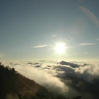 花の山と万葉の山を訪れる旅! ~奈良県でのおすすめハイキングスポット~