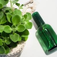 ふんわりナチュラルな香りを纏う。【手作り香水】のレシピ