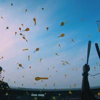 ピクニックやフェス気分♪ぽかぽか晴れた日は『野球場』へ行こう!