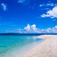サンゴ礁の海とマングローブの森が織りなす楽園 ~八重山諸島 西表島の見どころ~