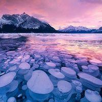 """氷の泡が一面を埋め尽くす!カナダの不思議な湖""""アブラハム湖"""""""