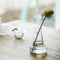春、花とフローラのある暮らし -scope×キナリノモール オープン記念特別企画-