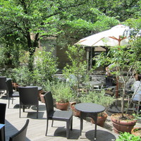 新緑の季節はお外でランチ♪都内のテラスが心地良いカフェ【10選】