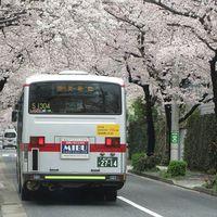 いつもの道にも新しい発見があるかも!都内・ローカルバス散歩