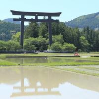 世界遺産の聖域 ~和歌山県 熊野古道を歩いてみませんか