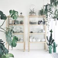『見せる収納』のコツ♪【シーン別】素敵なアイデアとおすすめ家具をご紹介
