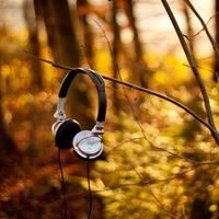 【はじめての北欧ジャズ♪】昼が似合う『軽やかな曲』と夜が似合う『しっとりした曲』プレイリスト