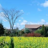 【大分県】自然を感じられる場所。ローズガーデンのあるハーブ園「大神ファーム」 を訪れて
