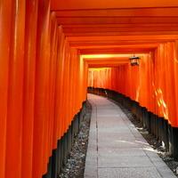 江戸時代の面影を色濃く残す古都への玄関口 ~京都市伏見エリアのおすすめスポット~