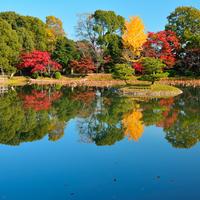 小倉山麓に抱かれた風光明美な地 ~京都・嵯峨野のおすすめスポット~