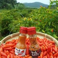 沖縄から西へ100km!自然豊かな久米島の恵みを届けてくれる「久米島るしぇ」