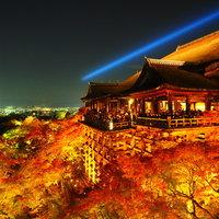 夜空、紅葉、光が織りなす幻想的な世界を訪れませんか~京都・東山での紅葉ライトアップ5選~