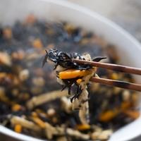 煮物にサラダ・・・カルシウムや食物繊維が豊富な「ひじき」レシピ