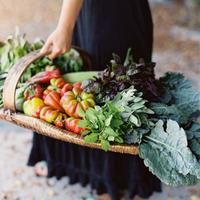 """環境のために、自分のために。""""野菜曜日""""を始めませんか?【週1ベジタリアンのすすめ】"""
