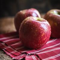 美味しいりんごの季節です♪逃したくないりんごスケジュールとレシピ案内