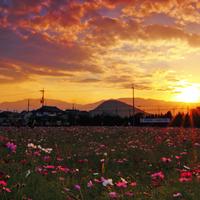万葉集ゆかりの山を訪れませんか。奈良県・二上山と、その周辺のおすすめスポット