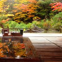ほっこりするならやっぱり温泉♪ 秋におすすめの温泉・日帰り温泉特集