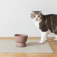 愛猫もきっと喜ぶ♪SUEKI CERAMICSから、ネコの水飲み器が登場です