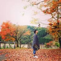 秋の味覚をほうばろう!自然いっぱいおすすめエリア・佐賀-三瀬高原・古湯温泉へ
