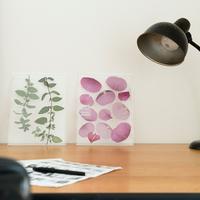 「ハーバリウム」って知ってる?おしゃれな植物標本をお部屋に飾ってみよう♪