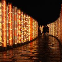 日本情緒と灯りが織りなす美しさに魅せられて ~京都・嵐山花灯路のおすすめスポット~