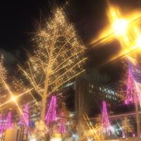 光が織り成す美しい風景に出会える街 ~大阪市内のおすすめイルミネーション5選~