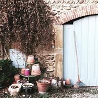 寒い季節もお水をあげていいの?外の植物の秋冬お手入れ方法をおさらいしよう♪